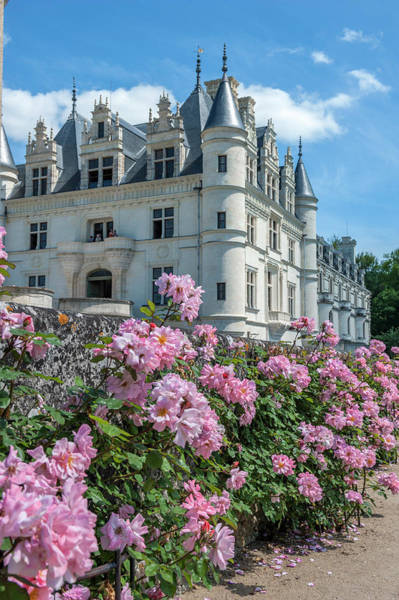 Wall Art - Photograph - Chateau De Chenonceau, Chenonceaux by Lisa S. Engelbrecht
