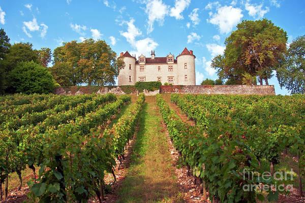 Photograph - Chateau Lagrezette by Silva Wischeropp