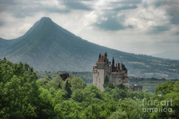 Photograph - Chateau Of My Saint by Peng Shi