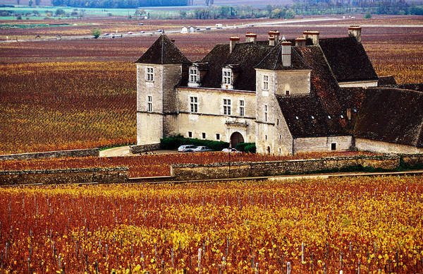 Famous People Photograph - Chateau Surrounded By Vines, Burgundy by Oliver Strewe