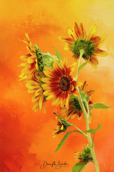 Wall Art - Digital Art - Cheerful Painted Sunflowers by Diane Schuster