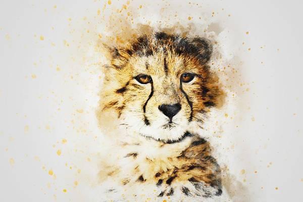 Cheetah Photograph - Cheetah by ArtMarketJapan