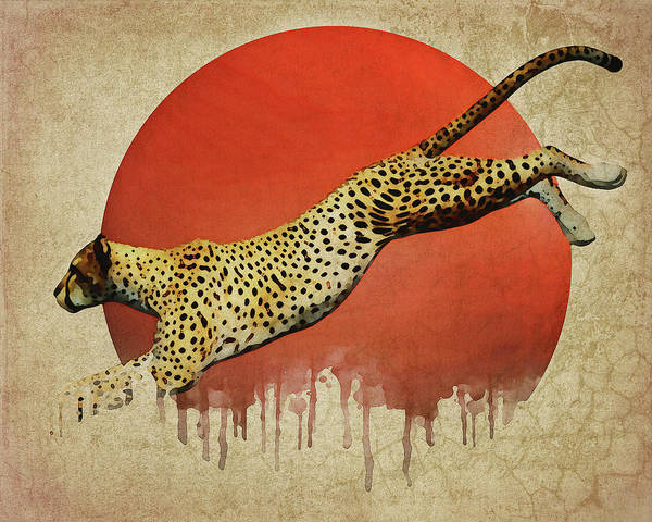 Cheetah On The Run Art Print