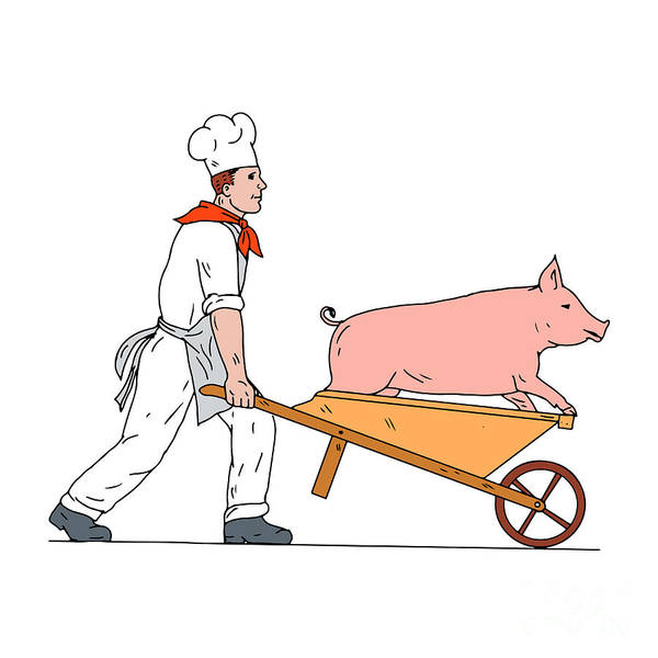 Wall Art - Digital Art - Chef Pushing Wheelbarrow And Pig Color Drawing by Aloysius Patrimonio