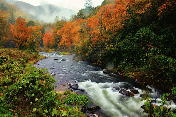 Photograph - Cherokee Autumn by Greg Norrell