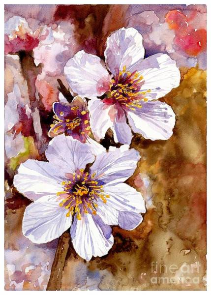 Wall Art - Painting - Cherry Blossom by Suzann Sines