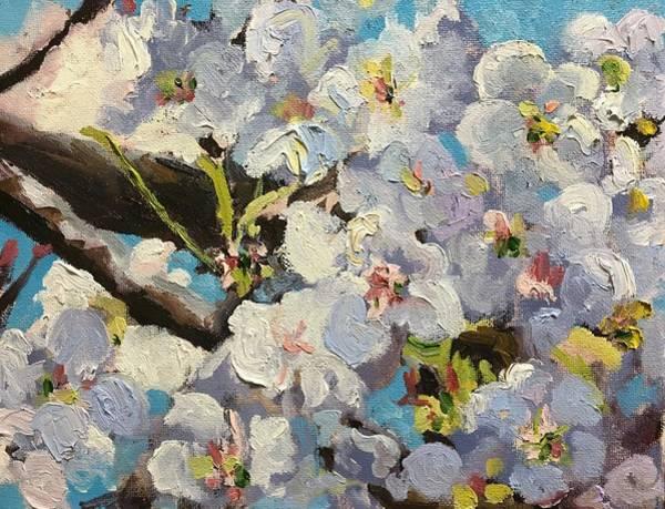 Wall Art - Painting - Cherry Blossoms by Susan Elizabeth Jones