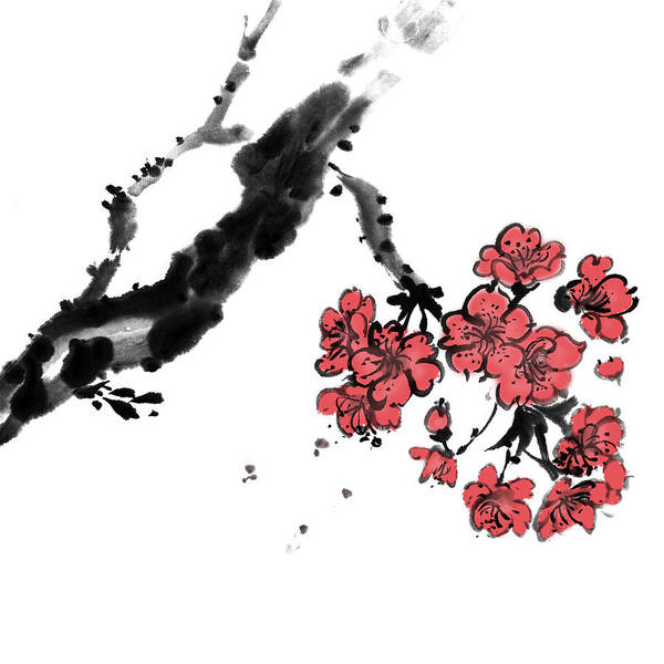 Wall Art - Digital Art - Cherry Blossoms by Vii-photo