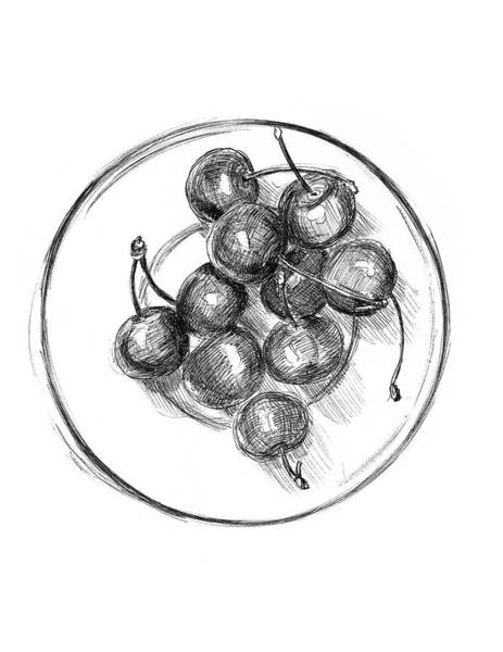 Juicy Drawing - Cherry Bowl by Masha Batkova