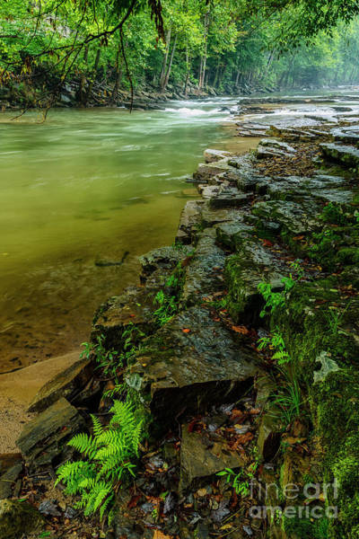 Photograph - Cherry Falls On Elk River by Thomas R Fletcher