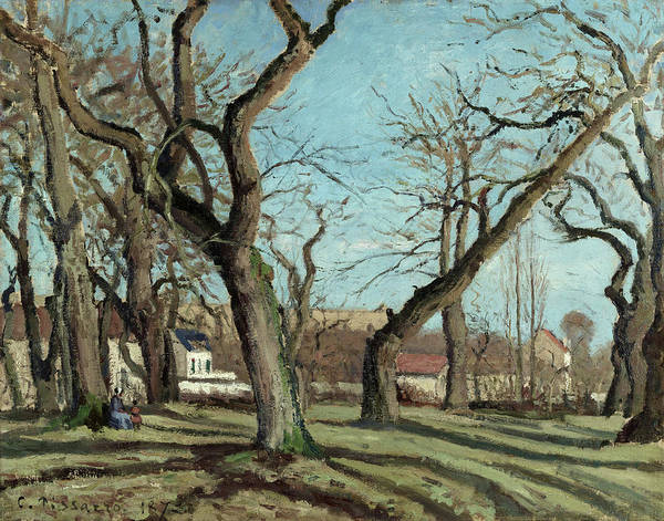 Wall Art - Painting - Chestnut Grove At Louveciennes, 1872 by Camille Pissarro
