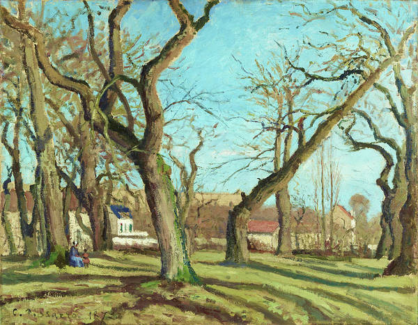 Wall Art - Painting - Chestnut Grove At Louveciennes - Digital Remastered Edition by Camille Pissarro