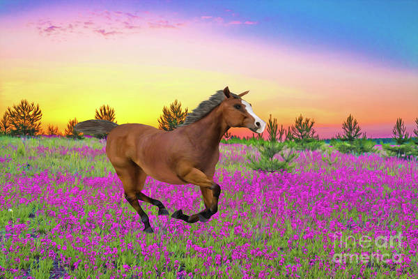 Wall Art - Photograph - Chestnut Horse In Summer Meadow by Laura D Young