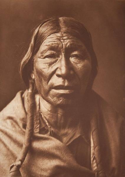 Painting - Cheyenne Type By Edward Sheriff Curtis by Celestial Images