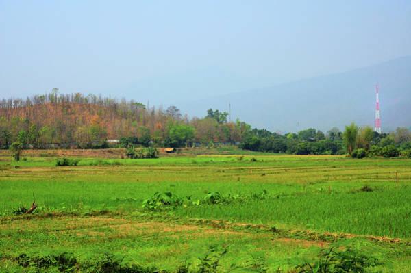 Farm Photograph - Chiang Mai Thai Rice Farmers by Joesboy