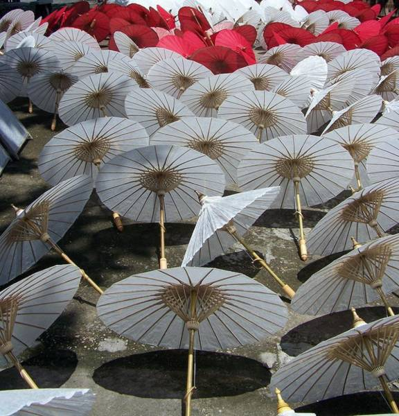 Chiang Mai Province Photograph - Chiang Mai Umbrellas by Photo By Rebecca Dawn Charles