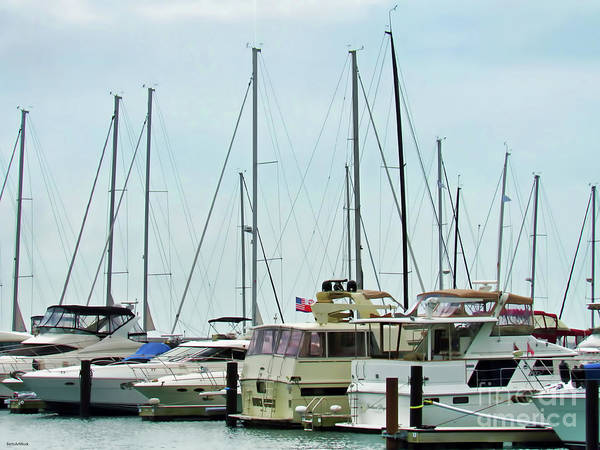 Photograph - Chicago Docked by Roberta Byram