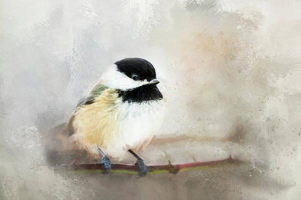 Wall Art - Digital Art - Chickadee by Terry Davis