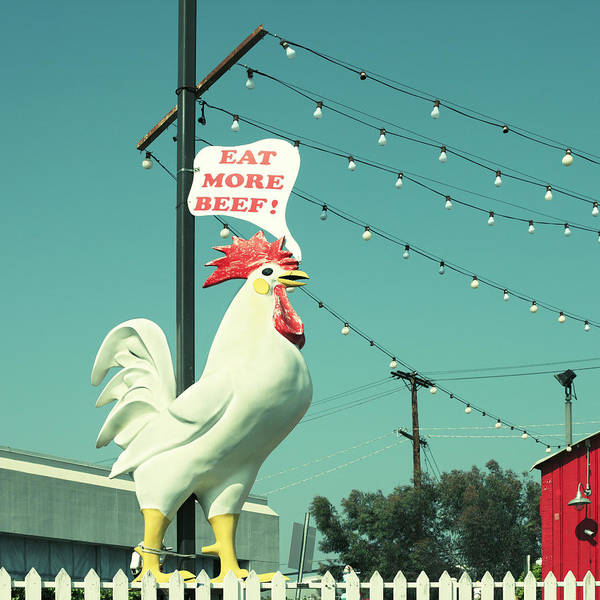 Photograph - Chicken Says Eat Beef by Farukulay