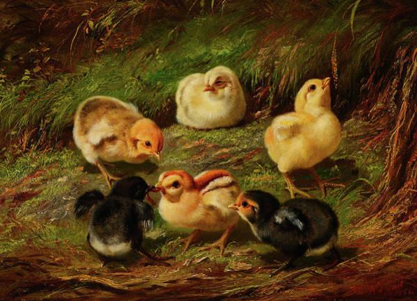 Wall Art - Painting - Chicks, 1864 by Arthur Fitzwilliam Tait