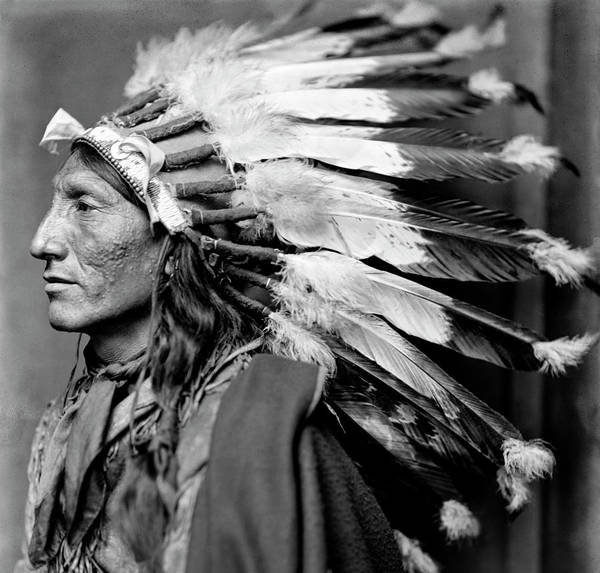 Wall Art - Photograph - Chief Whirling Horse C. 1900 by Daniel Hagerman