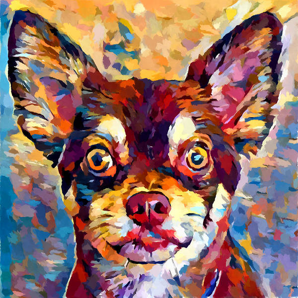Wall Art - Painting - Chihuahua 5 by Chris Butler