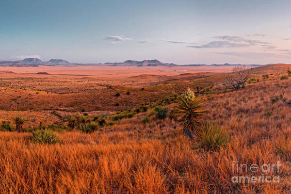 Wall Art - Photograph - Chihuahua Desert Twilight Glow - Davis Mountains State Park - Fort Davis West Texas by Silvio Ligutti