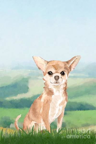 Pedigree Painting - Chihuahua by John Edwards