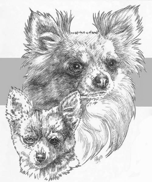 Drawing - Chihuahua - Longhair - And Pup by Barbara Keith
