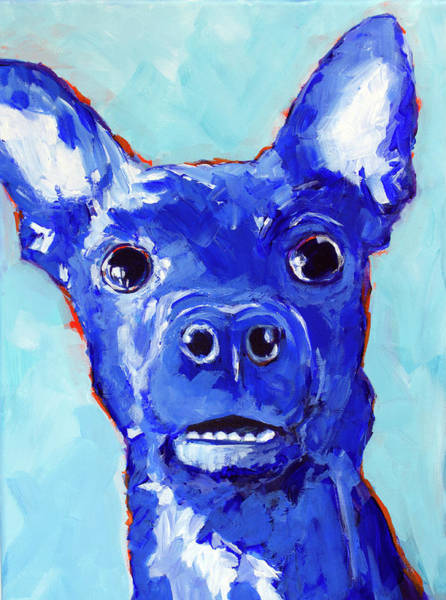Painting - Chihuahua Puppy Dog Portrait Blue by Patricia Awapara