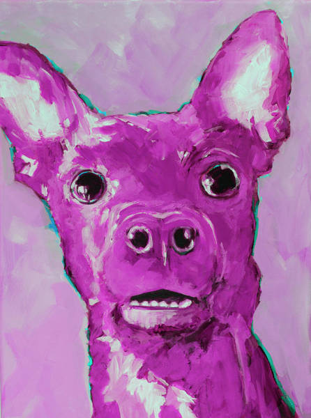 Painting - Chihuahua Puppy Dog Portrait by Patricia Awapara