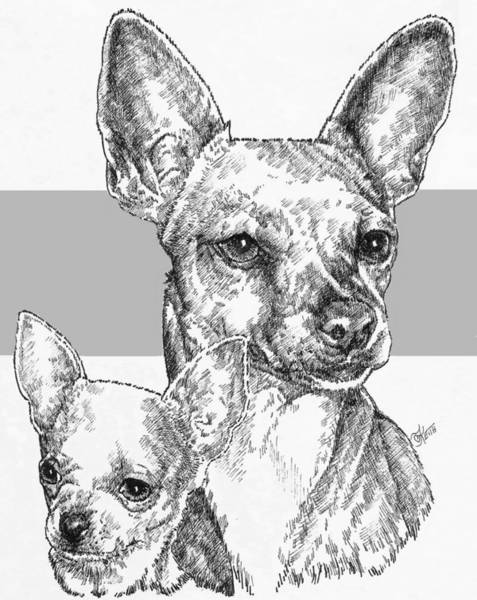 Drawing - Chihuahua - Smooth Coat - And Pup by Barbara Keith
