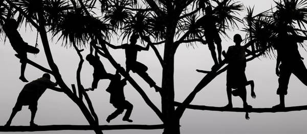 Famous People Photograph - Children Playing In A Tree In Zanzibar by Mint Images - Art Wolfe
