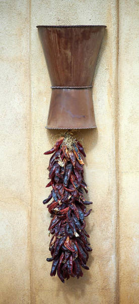 Wall Art - Photograph - Chili Ristra by Paul Freidlund