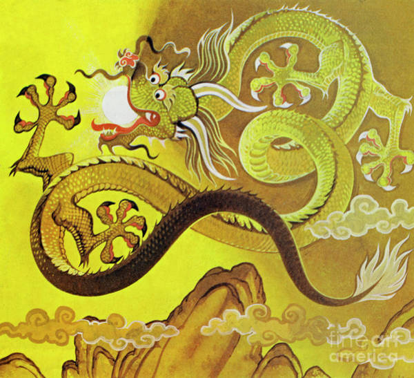 Wall Art - Painting - Chinese Dragon by Angus McBride