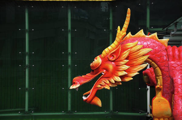 Chinese New Year Photograph - Chinese Dragon by Raj's Photography