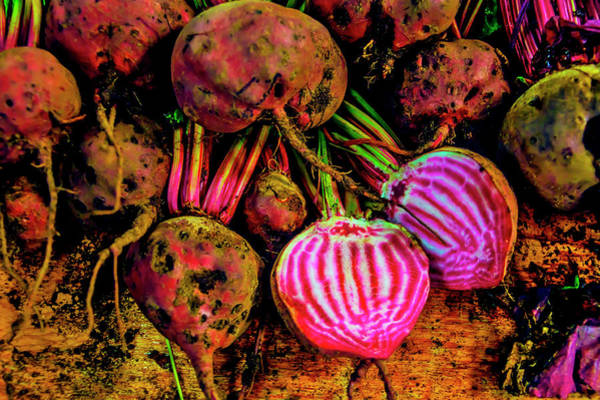 Beet Wall Art - Photograph - Chioggia Beets by Garry Gay