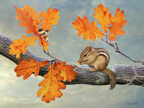 Wall Art - Digital Art - Chipmunk And Oak  by M Spadecaller