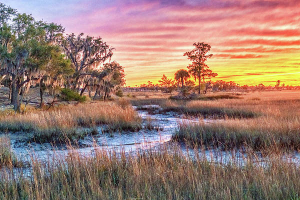 Photograph - Chisolm Island Marsh Sunset by Scott Hansen
