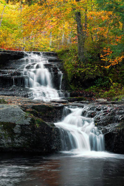 Wall Art - Photograph - Choke Creek Falls by Michael Gadomski