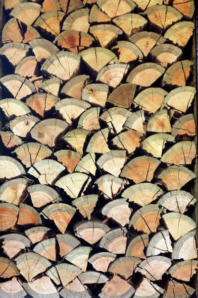 Material Photograph - Chopped Logs, Hoedspruit, Mpumalanga by Hphimagelibrary