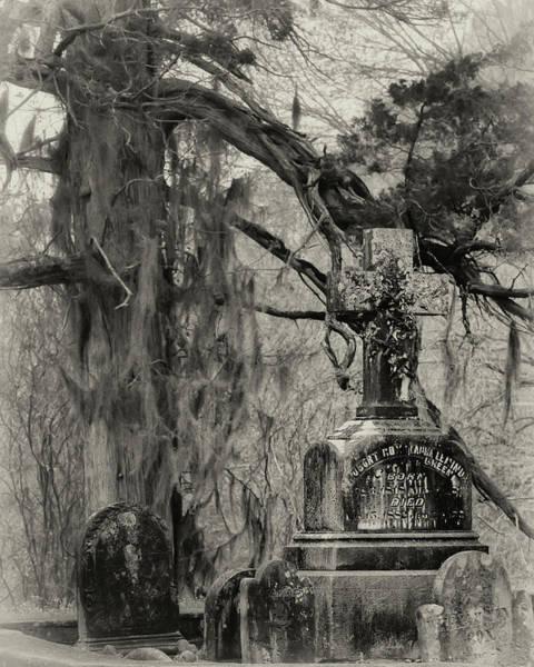 Photograph - Christ Church Graveyard by Susan Rissi Tregoning