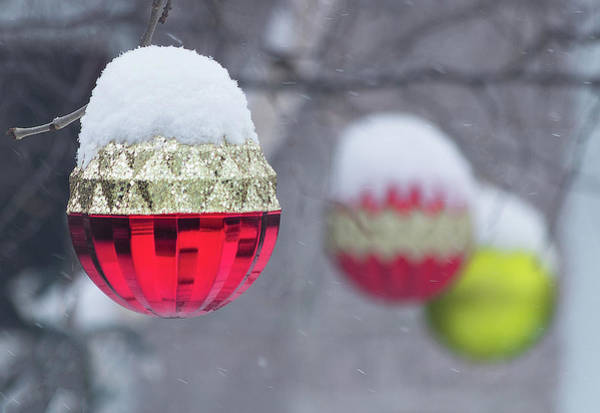 Photograph - Christmal Balls Outside Covered By Snow - Snowy Winter Scene by Cristina Stefan