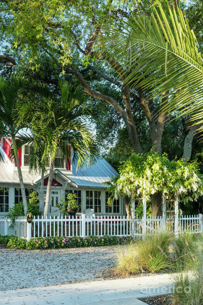 Photograph - Christmas Cottage Naples Florida by Brian Jannsen