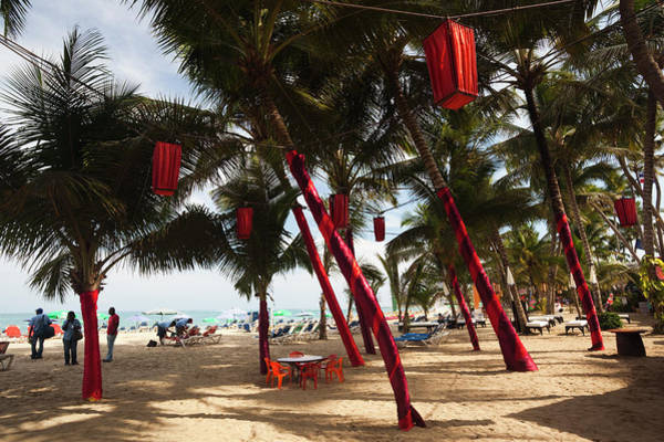 Decoration Photograph - Christmas Decorations, Playa Cabarete by Walter Bibikow