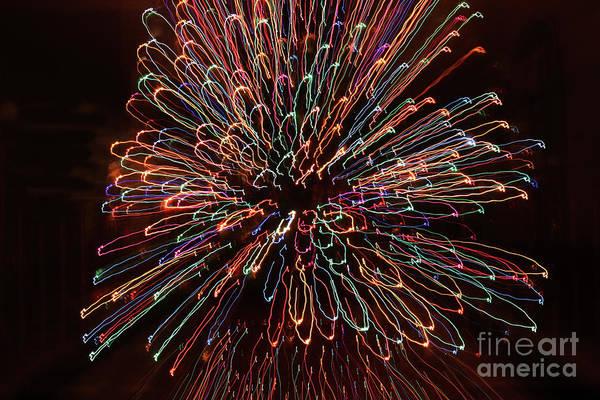 Photograph - Christmas Light Blossom by Rick Locke