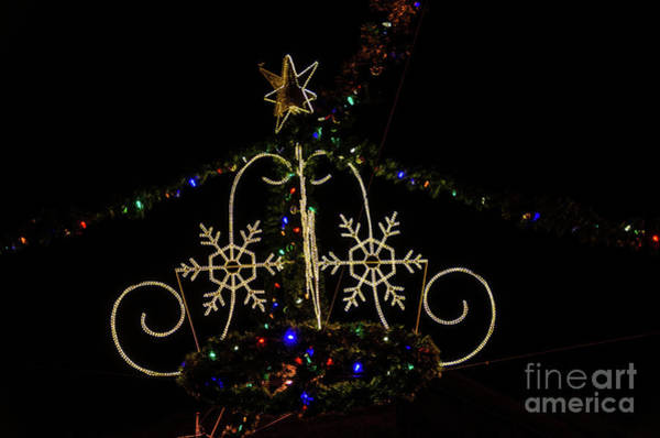Photograph - Christmas Lights At Night by Sue Smith