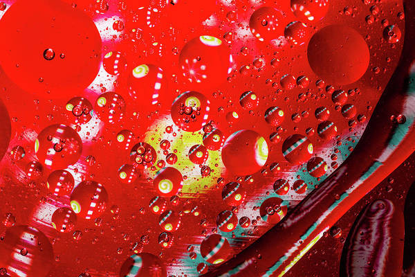 Photograph - Christmas Oil And Water by Jay Stockhaus