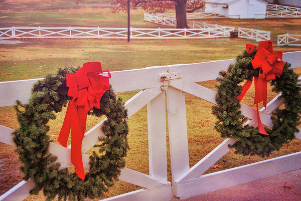 Photograph - Christmas Pasture by JAMART Photography