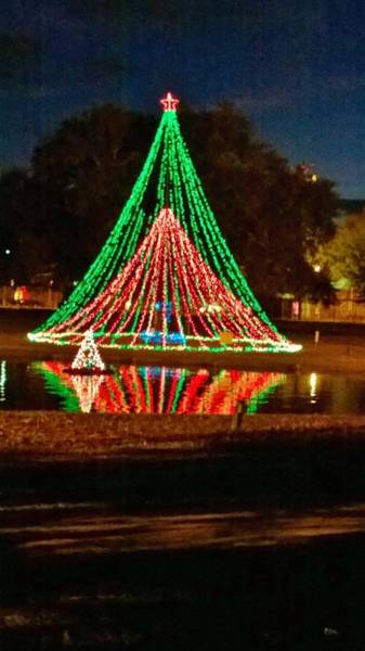 Wall Art - Photograph - Christmas Reflections  by Gayle Miller